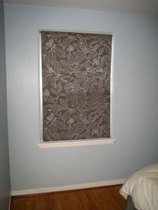 roller-shade-window